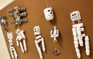 eco skeletons1