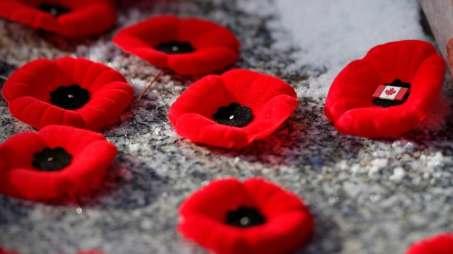 remembrance-day-winnipeg-20141111